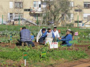urban kibbutz in Jerusalem
